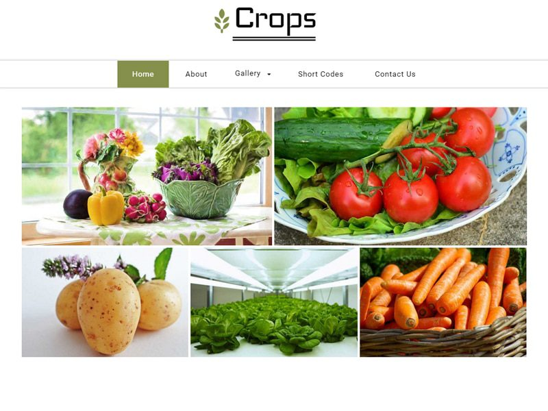 Crops Free Bootstrap Template For Agriculture