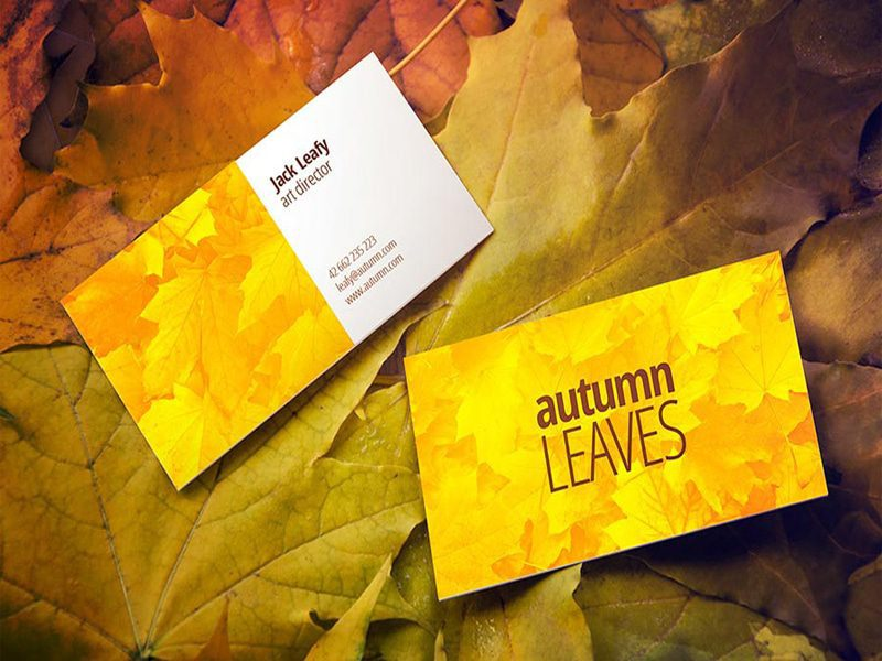 Autumn Leaves Business Card Mock-Up