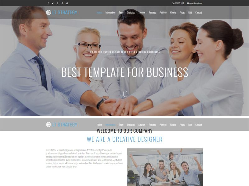 LT Strategy Onepage Free WordPress Theme For Business