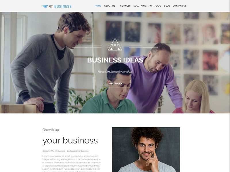 NT Business Responsive Business WordPress Theme