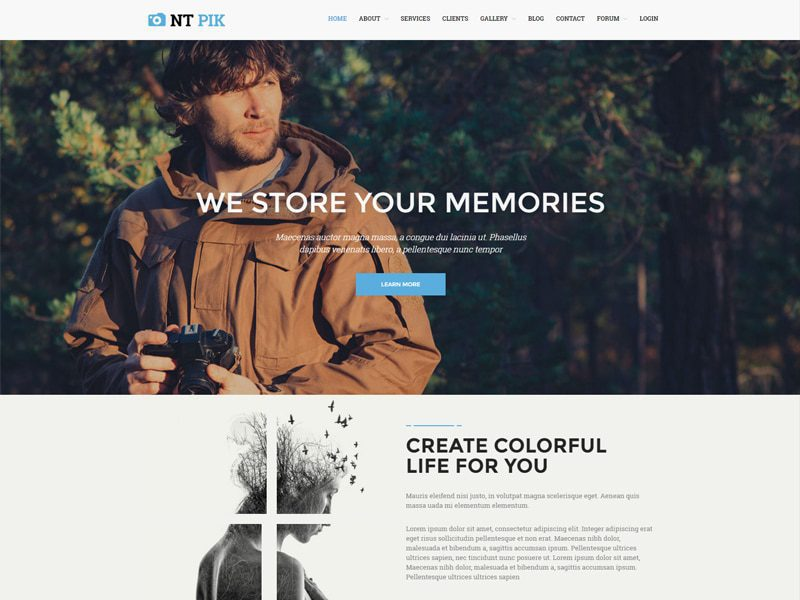 NT Pik Free WordPress Theme For Photography