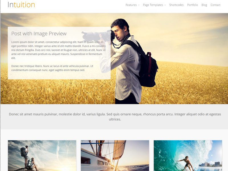 Intuition Free WordPress Theme For Blog