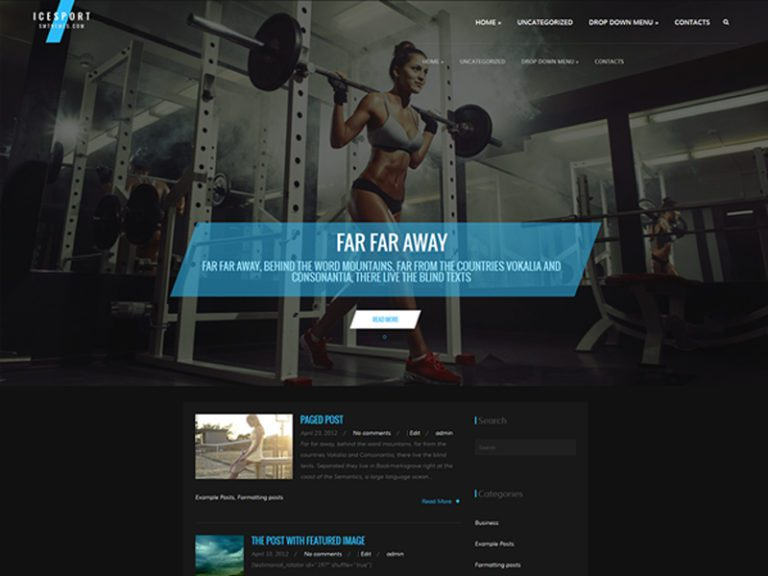 ICESPORT FREE WORDPRESS GYM THEME