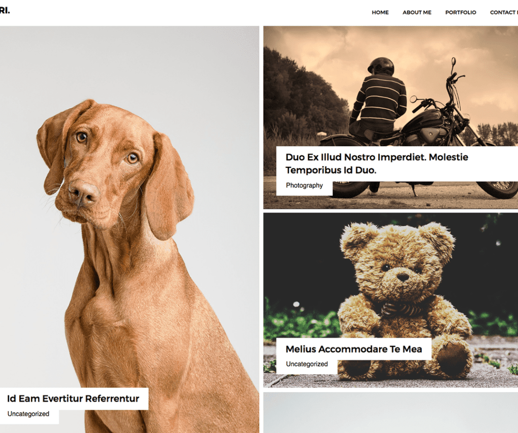 ADRI FREE PHOTOGRAPHY WORDPRESS THEME
