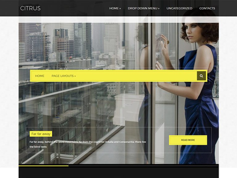 CITRUS FREE WORDPRESS THEME FOR FASHION
