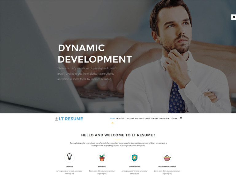 LT RESUME ONEPAGE FREE JOOMLA TEMPLATE FOR RESUME