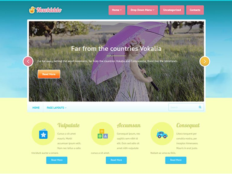 NEWKIDDO FREE WORDPRESS THEME FOR BABY SHOP