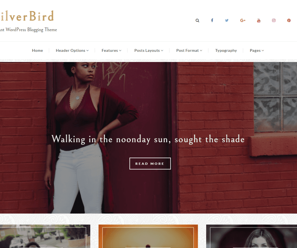 SILVERBIRD FREE HOLIDAY WORDPRESS THEME