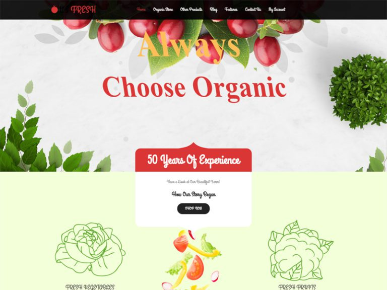 WS FRESH FREE WORDPRESS WOOCOMMERCE THEME FOR AGRICULTURE STORE