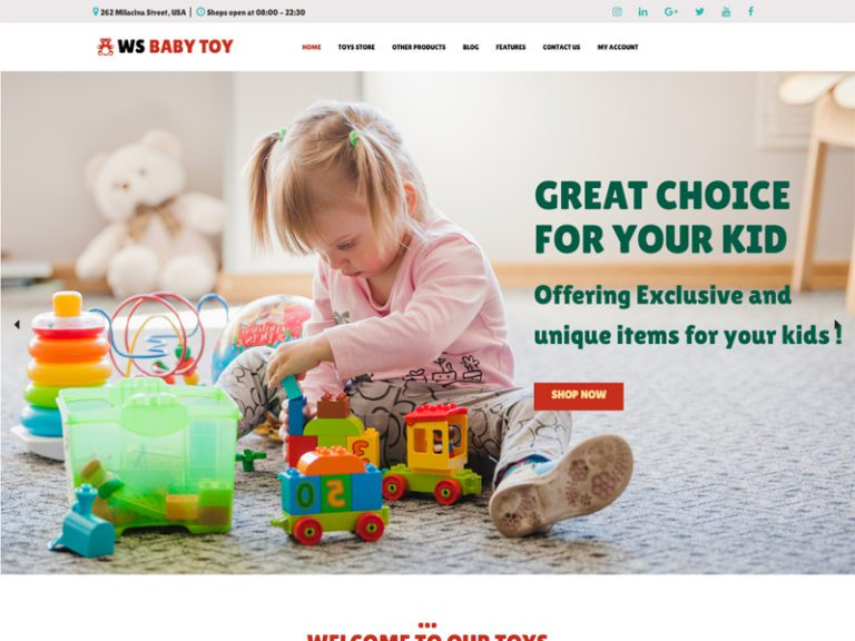 WS TOY FREE WORDPRESS WOOCOMMERCE THEME FOR KIDS STORE