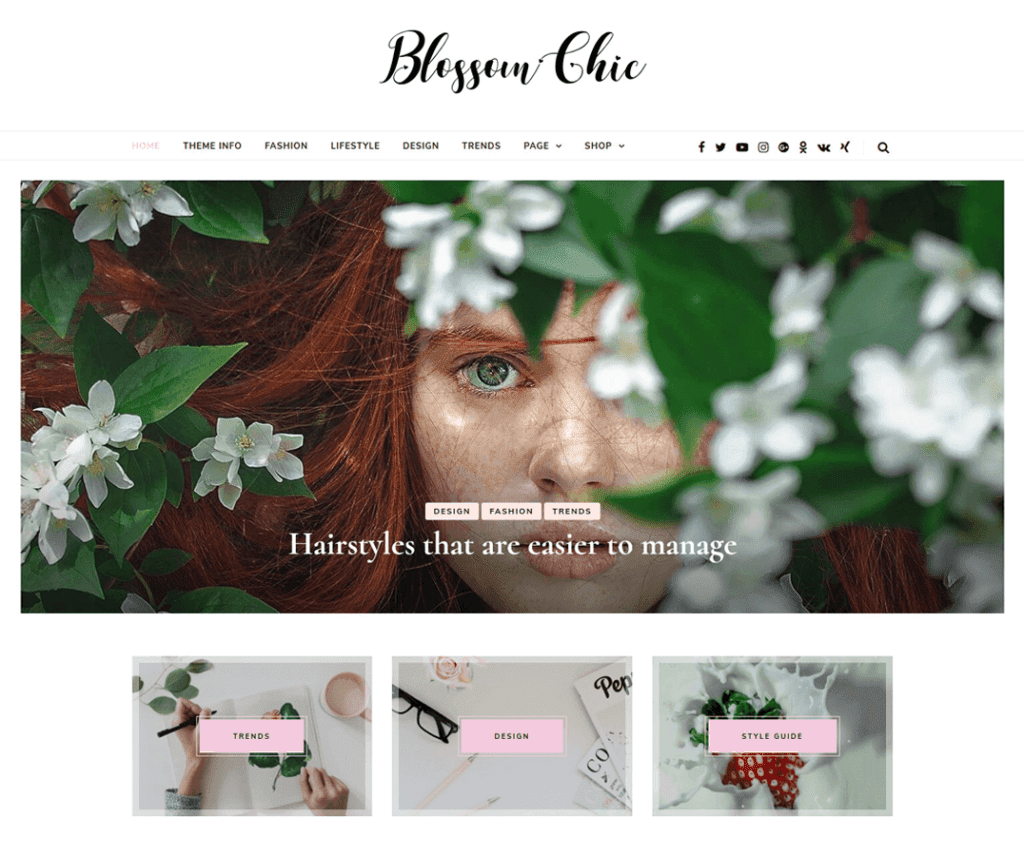 BLOSSOM CHIC FREE PHOTOGRAPHY WORDPRESS THEME