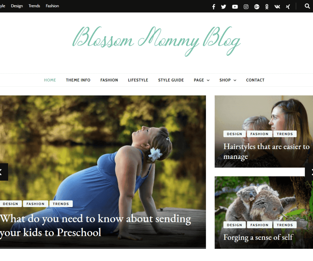 BLOSSOM MOMMY BLOG FREE PHOTOGRAPHY WORDPRESS THEME