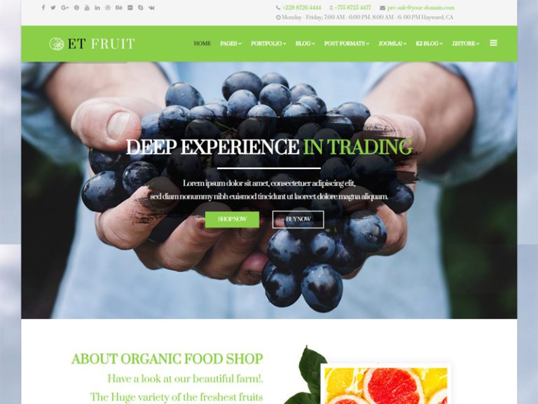 ET FRUIT FREE JOOMLA ORGANIC FOOD TEMPLATE