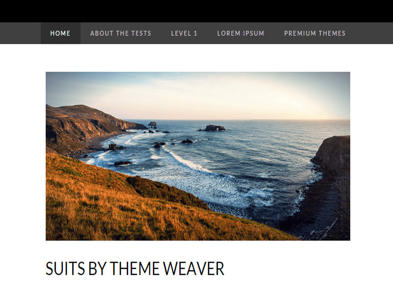 FREE SUITS THEME FOR YOUR WORDPRESS SITE