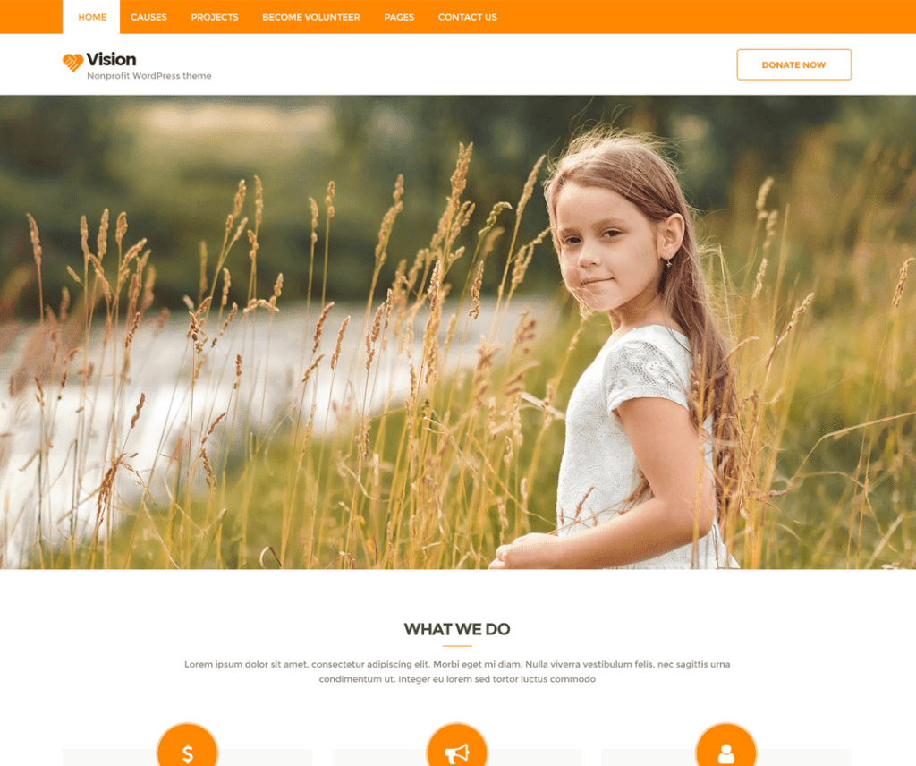 VISION LITE FREE HOLIDAY WORDPRESS THEME