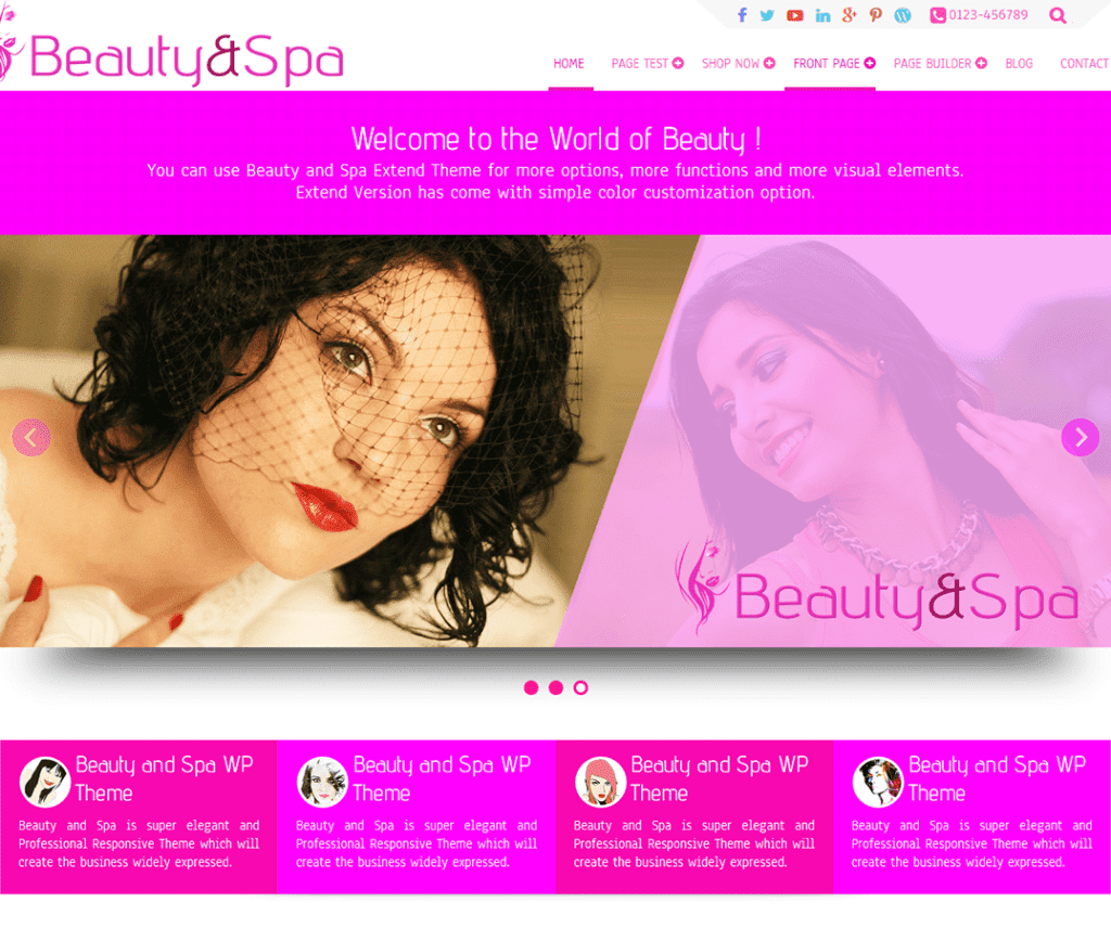 BEAUTY AND SPA FREE HOLIDAY WORDPRESS THEME