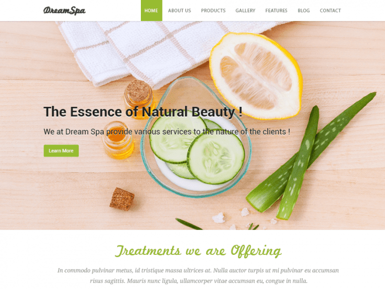 DREAM SPA FREE PHOTOGRAPHY WORDPRESS THEME