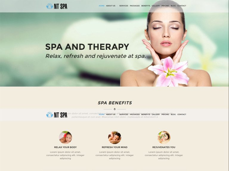 NT SPA FREE WORDPRESS THEME FOR BEAUTY