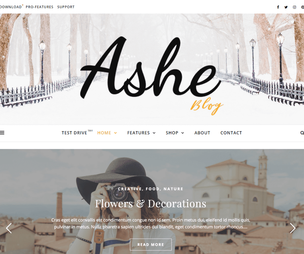 ASHE FREE FOOD AND DRINK WORDPRESS THEME