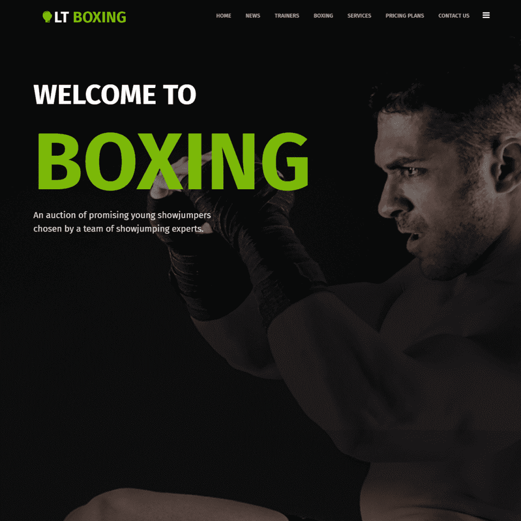 LT BOXING ONEPAGE FREE SINGLE PAGE RESPONSIVE JOOMLA SPORT THEME