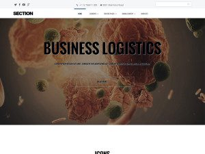 section_joomla_for_business
