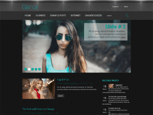 Free Theme WordPress For Photography