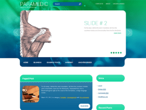 Free Theme WordPress Paramedic