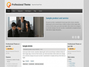 Professional Drupal-Free Theme WordPress
