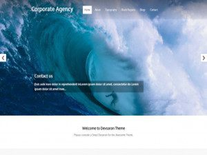 Corporate Agency Theme Drupal Free