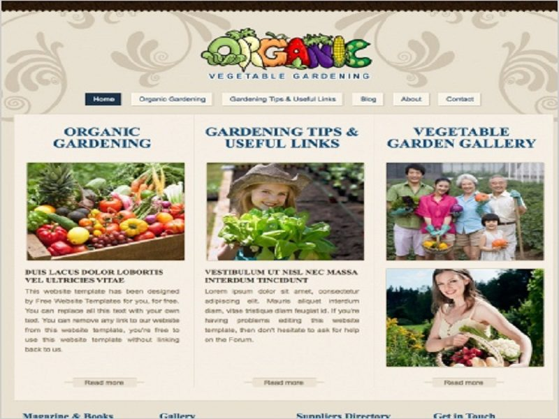 Template Free Website Organic