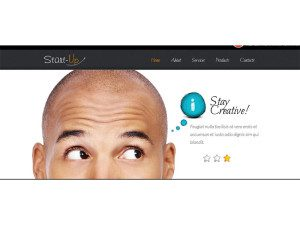 zStartUp Responsive Free Css3 Html5 Template