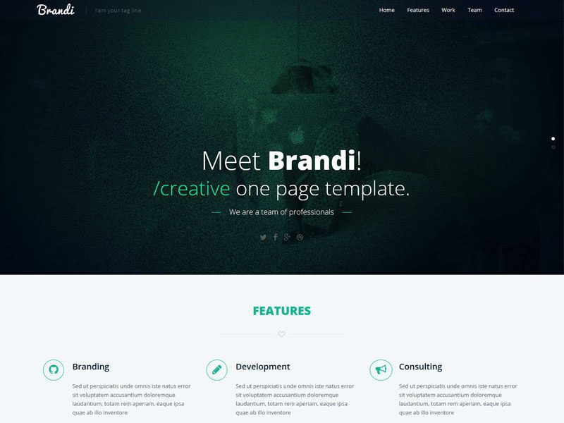 Brandi free one page html5 business template brandi free one page html business template cheaphphosting