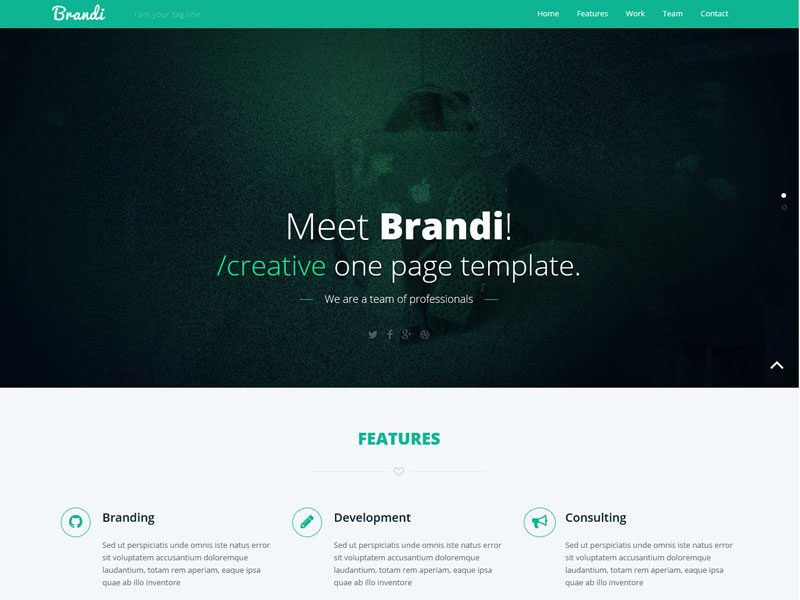 Brandi Free Bootstrap Corporate Template