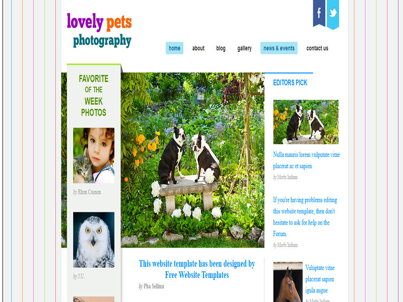 Lovely Pets Photography WordPress Template