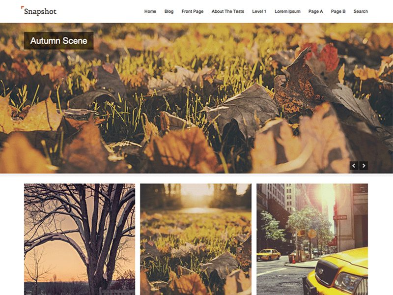 Snapshot Download Free WordPress Theme For Photography