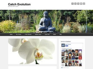 Catch Evolution Free Wordpress Theme For Business