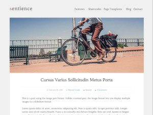 Sentience Free Wordpress Theme For Photographer