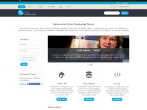 Virgo Free Drupal Business Theme