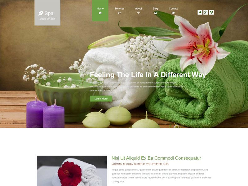 Spa Free Bootstrap Template For Beauty