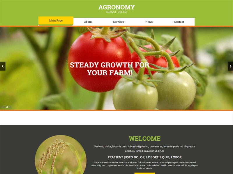 Agronomy Free Bootstrap Template For Agriculture Business