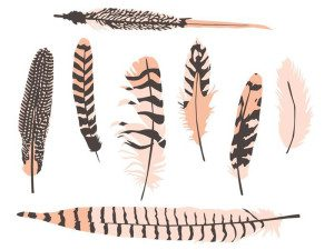 Hand Drawn Feather Free Vector