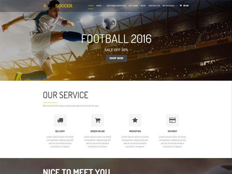 WS Soccer Free WordPress WooCommerce Theme For Sport