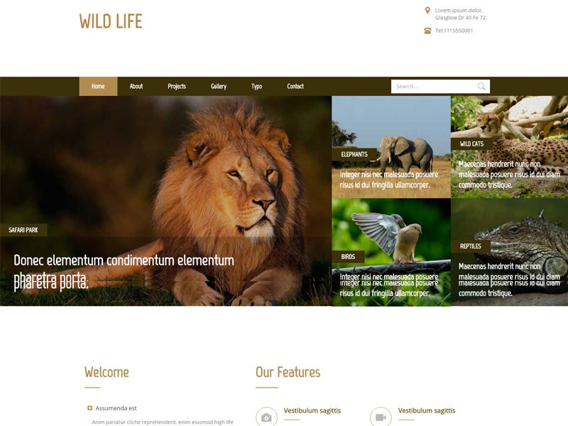 zoos health and wild life
