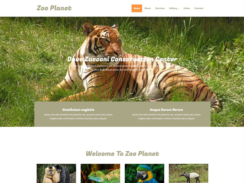 Lonex web hosting » blog archive » pet and zoo animals inspired.
