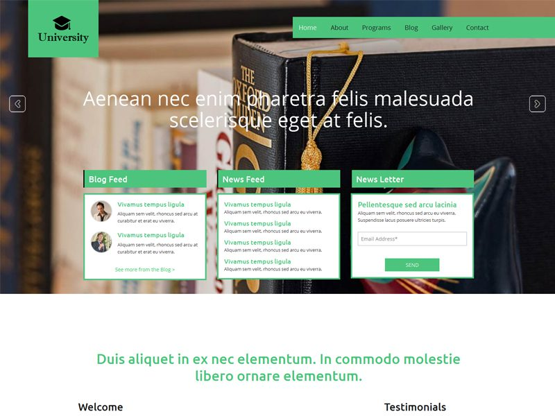 University Free Responsive Education Bootstrap Template