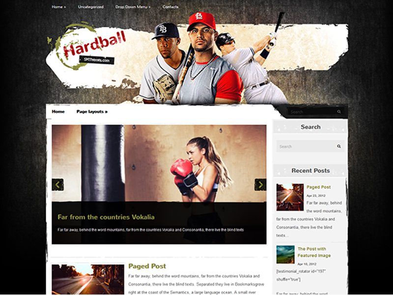 HardBall Free Sport WordPress Theme