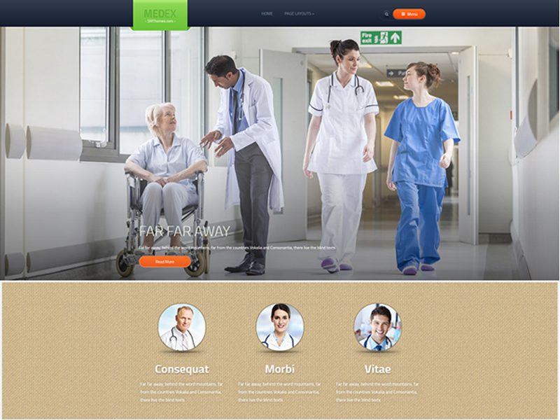 Free WordPress Hospital Theme
