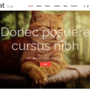 Cat Club Free Bootstrap Animals Template