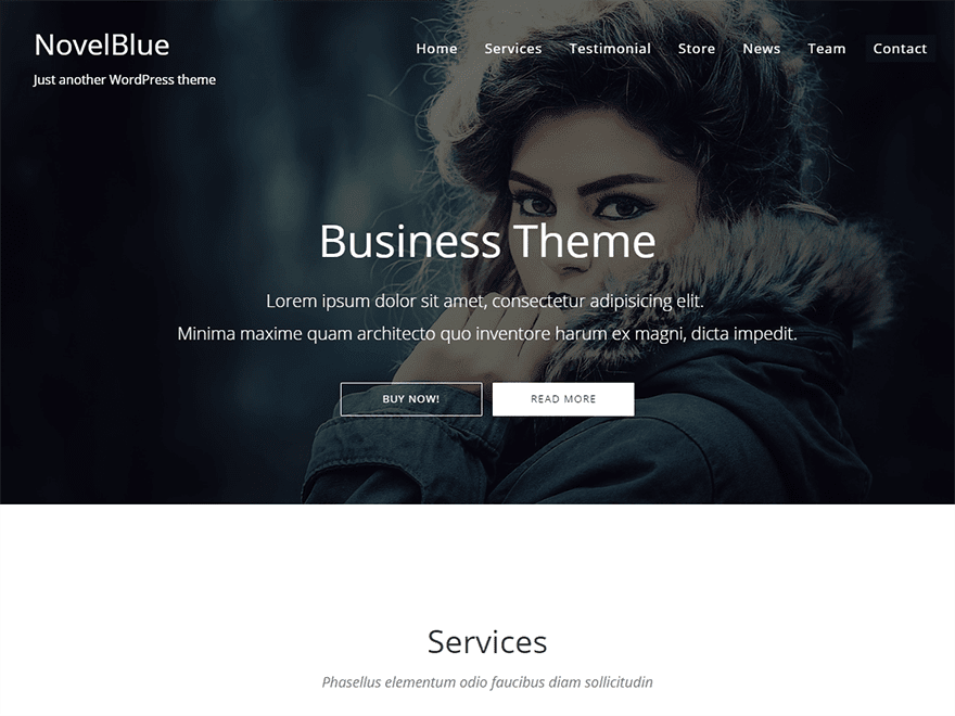 NovelBlue Free Blog WordPress Theme
