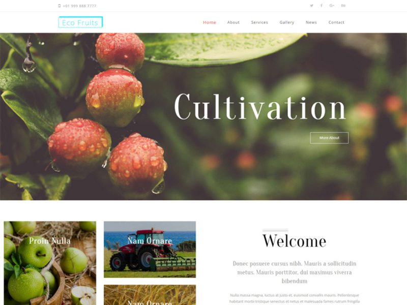Eco Fruits Agriculture Website Template